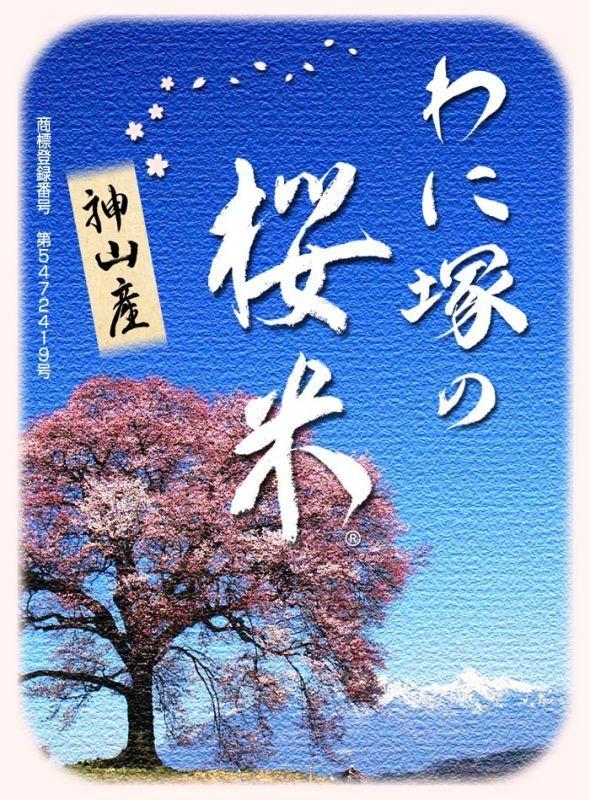 画像1: わに塚の桜米 新米 令和 元年産    玄米30kg
